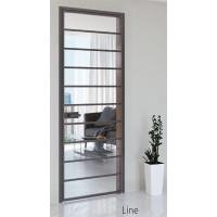 Межкомнатные алюминиевые двери Aludoors Line